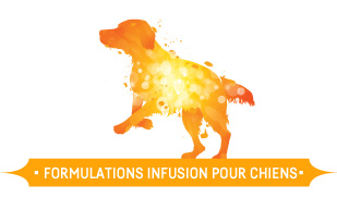 Nutrience Infusion, Chiens