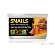 Aliments en conserve Exo Terra, Escargots (sans coquille), 48 g (1,7 oz)