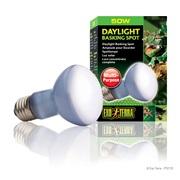 Ampoule à lumière du jour Exo Terra pour lézarder, R20, 50 W