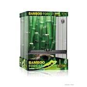 Habitat équipé ExoTerra avec forêt de bambou, grand