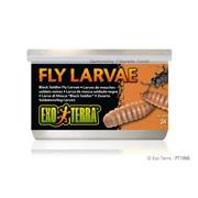 Aliments en conserve Exo Terra, Larves de mouches, 34 g (1,2 oz)