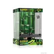 Habitat équipé ExoTerra avec forêt de bambou, petit