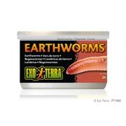 Aliments en conserve Exo Terra, Vers de terre, 34 g (1,2 oz)