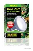 Ampoule à lumière du jour Exo Terra pour lézarder, R30, 150 W