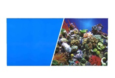 Arrière-plan réversible ClearView Marina, récif marin/bleu uni, H. 45,7cm x L. 7,6m (18po x 25pi)