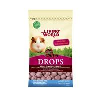 Régals Drops Living World pour cochons d'Inde, saveur de fruits des champs, 75g (2,6oz)