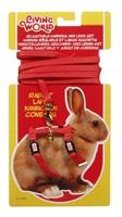 Ensemble laisse et harnais réglable Living World pour lapin, rouge, laisse de 1,2m (4 pi)