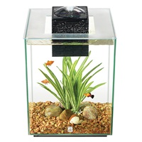 Aquarium équipé Chi II Fluval, 19 L (5 gal US)