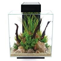 Aquarium équipé Fluval Edge, noir, 46L (12galUS)