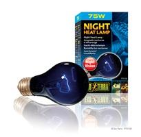 Ampoule nocturne à infrarouge Exo Terra, A19, 75 W