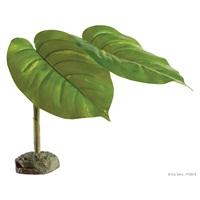 Plante ornementale Exo Terra, scindapsus