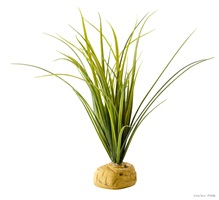 Plante aquatique Exo Terra, herbe pour tortues