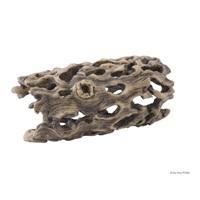 Cholla arborescent ExoTerra, petit, 6 x 11 cm (2,4 x 4,3 po)