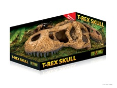 Crâne de tyrannosaure Exo Terra, grand