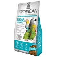 Aliment Lifetime Tropican pour perroquets, granulés de 4 mm, 1,8kg (4lb)