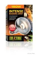 Ampoule intense Exo Terra pour lézarder, S30, 150 W