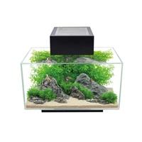 Aquarium équipé Edge Fluval, noir, 23L (6galUS)