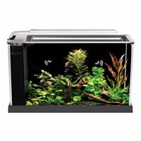 Aquarium équipé SPEC Fluval, noir, 19 L (5galUS)
