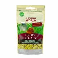 Régals Drops Living World pour rats, saveur de miel, 75 g (2,6 oz)