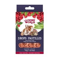 Régals Living World pour petits animaux, pastilles, arôme de framboise, 75g (2,6oz)