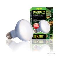 Ampoule à lumière du jour Exo Terra pour lézarder, R20, 75 W