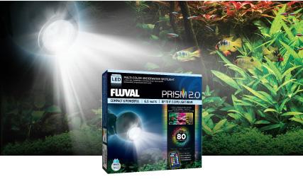 Lampe à DEL submersible Prism Fluval à faisceau étroit multicolore