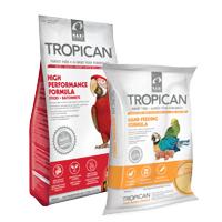 Aliment Tropican pour oiseaux